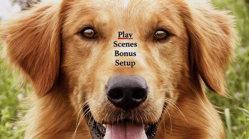 A Dog S Purpose 2017 Dvd Menu